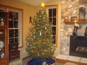 christmas-photos-001